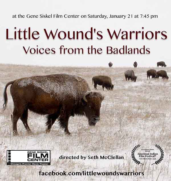little wound's warriors poster