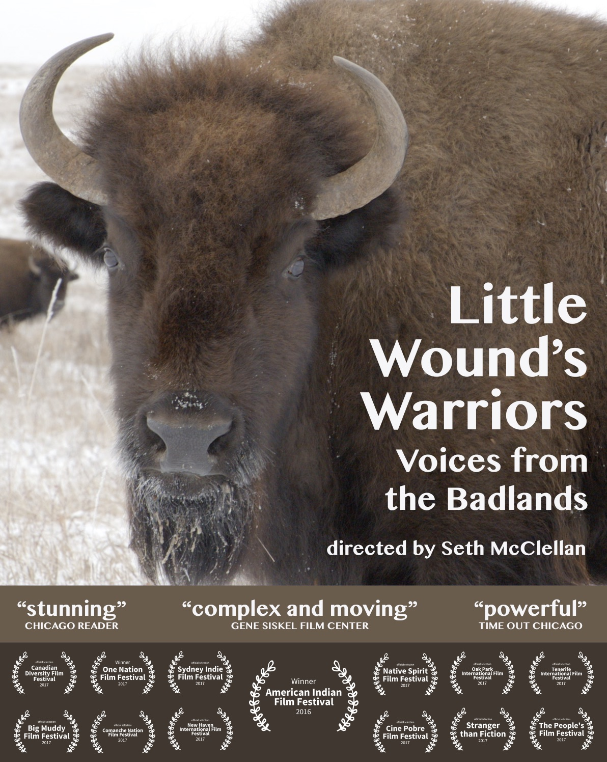 little wounds warriors poster